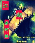 江湖奈何桥封面