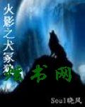 火影之犬冢狼封面