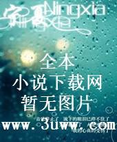 孙悟空之七日假期封面